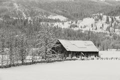 Old barn in snowy pasture. Royalty Free Stock Image