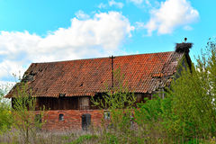 Old barn with a stork nest Stock Photo