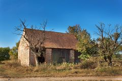 Old barn and tree against blue sky background. Abandoned farm buildings with weathered wall. Royalty Free Stock Photos