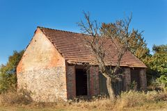 Old barn and tree against blue sky background. Abandoned farm buildings with weathered wall. Royalty Free Stock Photography