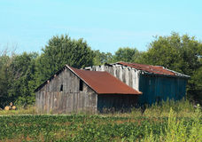 Old barn w/rust colored roof. Royalty Free Stock Image
