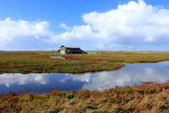 Old barn in the wetlands. With clouds reflecting from the water Stock Photos