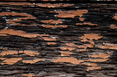 Free Old Barn Wood Floor Texture Background Royalty Free Stock Photography - 86635587