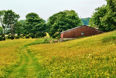 Old barn in a Yorkshire Dales hay meadow Stock Photos