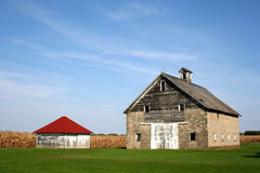 Old Barns. By corn field royalty free stock images