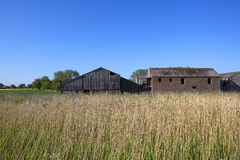 Old barns and reed beds Royalty Free Stock Photo