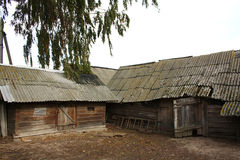 Old barns on a rural farmstead. Old wooden sheds on a farmstead of the farm in the Belarusian province Stock Photography