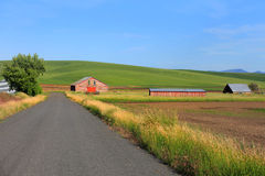 Old barns. By the rural road in Washington state royalty free stock images