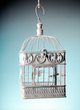 Old baroque cage Stock Images