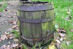 Old barrel on autumn background Stock Photography