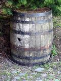 Old barrel. An old barrel under a tree with rusted hoops Royalty Free Stock Images
