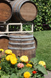 Old Barrels Stock Images