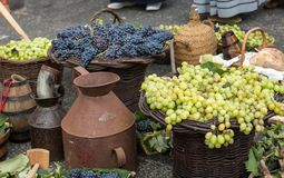 Old barrels and tools for wine production and baskets with grapes.  royalty free stock photo