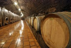 Old barrels in a wine cave Stock Photos