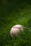 Old Baseball in the Grass. One aged and worn baseball sitting in the green grass Stock Photos