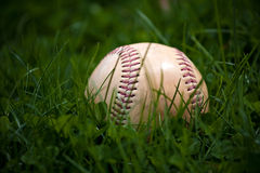 Old Baseball in the Grass Royalty Free Stock Photography