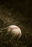 Old Baseball in the Grass Royalty Free Stock Image