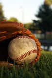 Old Baseball In a Mitt Stock Images
