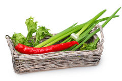 Old basket with green onions, fresh lettuce Stock Image
