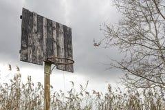 Old basketball backboard and basket. Deserted basketball backboard. On a background of trees Stock Images
