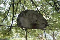 Old basketball backboard and hoop stock image