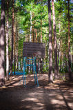 Old basketball court in a pine forest Stock Photos