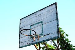 Old basketball hoop with vines Stock Photo