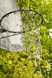 Old basketball net Stock Images
