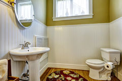 Old bathroom interior with green wall and white plank panel trim Stock Image