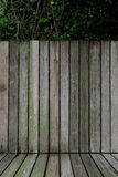 Old battens texture for background and place the product. There are green plants in the back Stock Images