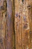 Old beams Royalty Free Stock Photos