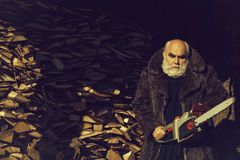 Old bearded man with chainsaw. Old bearded man with long silver beard and moustache in fur coat holding big chainsaw sunny day outdoor on wood background stock image