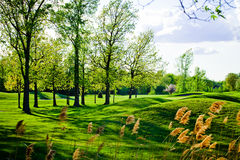Old and beautiful bumpy golf course Stock Image