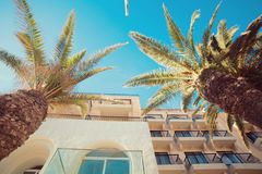 An old beautiful house with palm trees  in Malta. In the sunlight Royalty Free Stock Photography