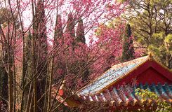 Old beautiful priest's house in china Royalty Free Stock Photography