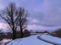 Road and old trees in winter, Lithuania Stock Photography