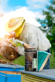 Old bee smoker. The beekeeper works on apiary near the hives. Beekeeping tool. Apiculture. Old bee smoker. Beekeeping tool. The beekeeper works on an apiary stock photos