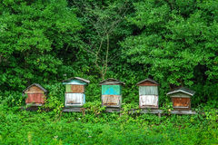 Old beehives Stock Image