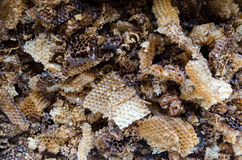 Old beeswax. Old bee beeswax for melting Royalty Free Stock Photo