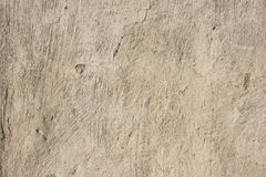 Old beige concrete Royalty Free Stock Photography