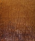 Old beige leather Royalty Free Stock Photo