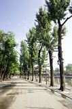 Old Beijing in Shichahai. Park royalty free stock photography