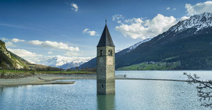 Old belfry staying in lake water in spring day Stock Images
