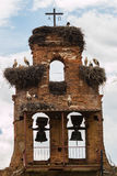 Old bell gable invaded by stork nestes in a village of Spain Stock Photos
