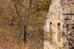 Old bell gable and tree face to face Royalty Free Stock Photos