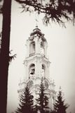 Old Bell tower seen through a tree. Royalty Free Stock Images