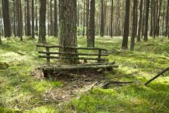 The old bench. Meetings lovers Stock Image
