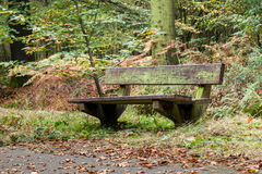 An old bench Royalty Free Stock Image