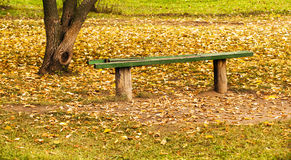 Old bench. autumn Royalty Free Stock Image