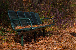 Old  bench in the autumn park Stock Image